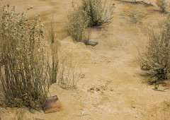 A close-up of a desert diorama with sand, shrubs, and two books placed underneath the shrubs.