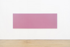 A long rectangular painting of medium pink with a lighter pink border hangs horizontally from a white wall above a wooden floor.