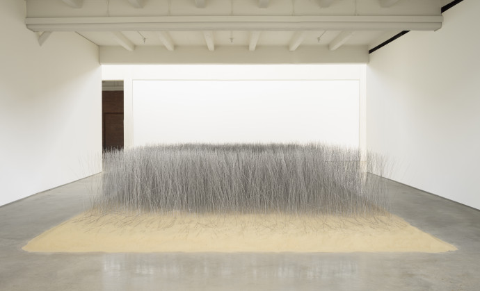 Thousands of tightly arranged, thin steel rods stand upright in a bed of sand on a concrete floor surrounded by three white walls.